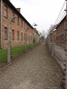 120405 Camp d'Auschwitz_Barbelés